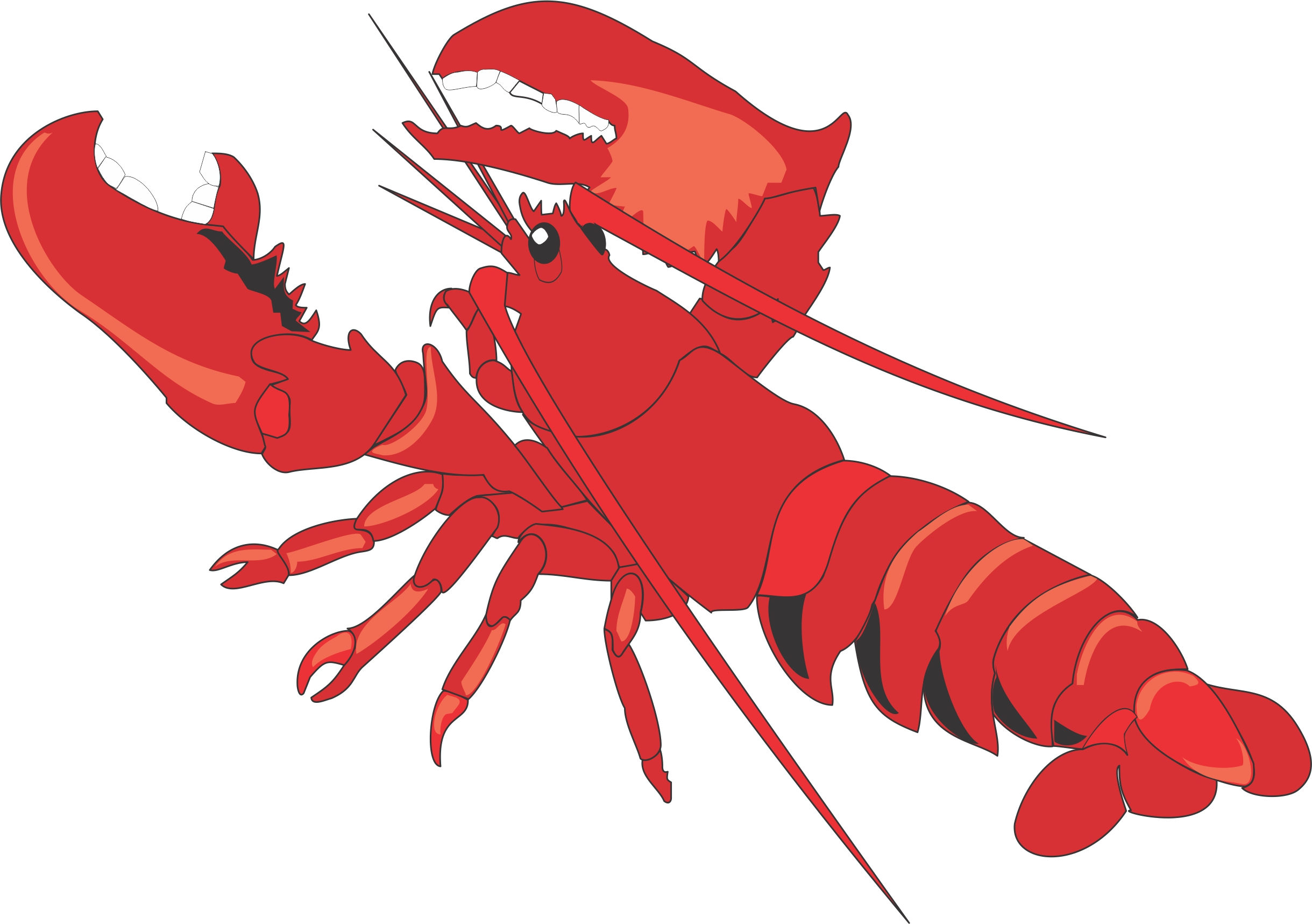 Lobster clipart images free