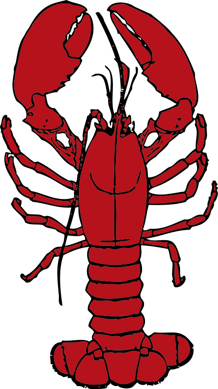 Lobster free food clipart images org