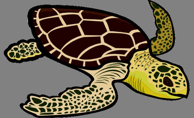 Loggerhead sea turtle clipart