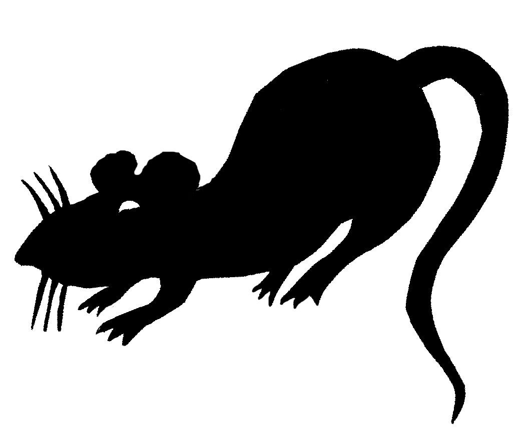Mean rat clipart