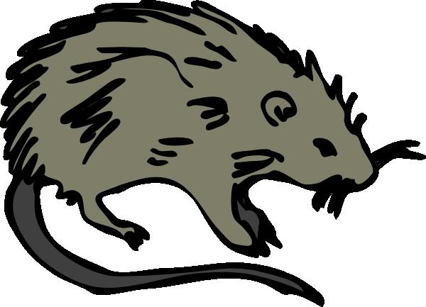 Mouse rat rodent clip art at vector clip art