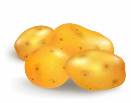 Potato clip art download 3