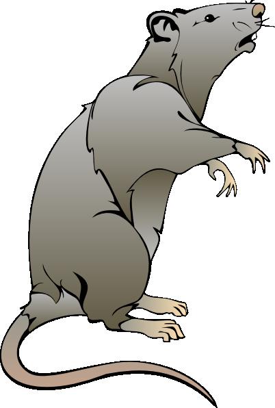 Rat clip art free clipart images 2