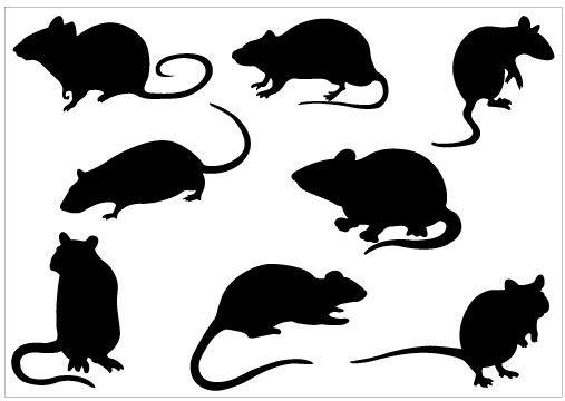 Rat silhouette clip art pack template clipart