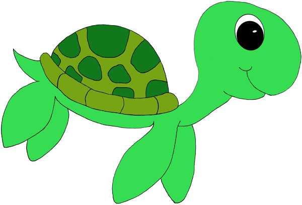 Sea turtle clipart 3