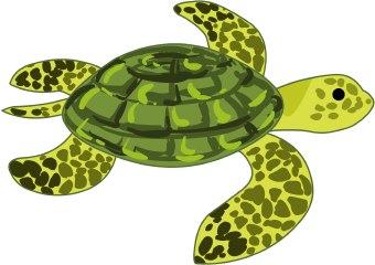 Sea turtle clipart 5