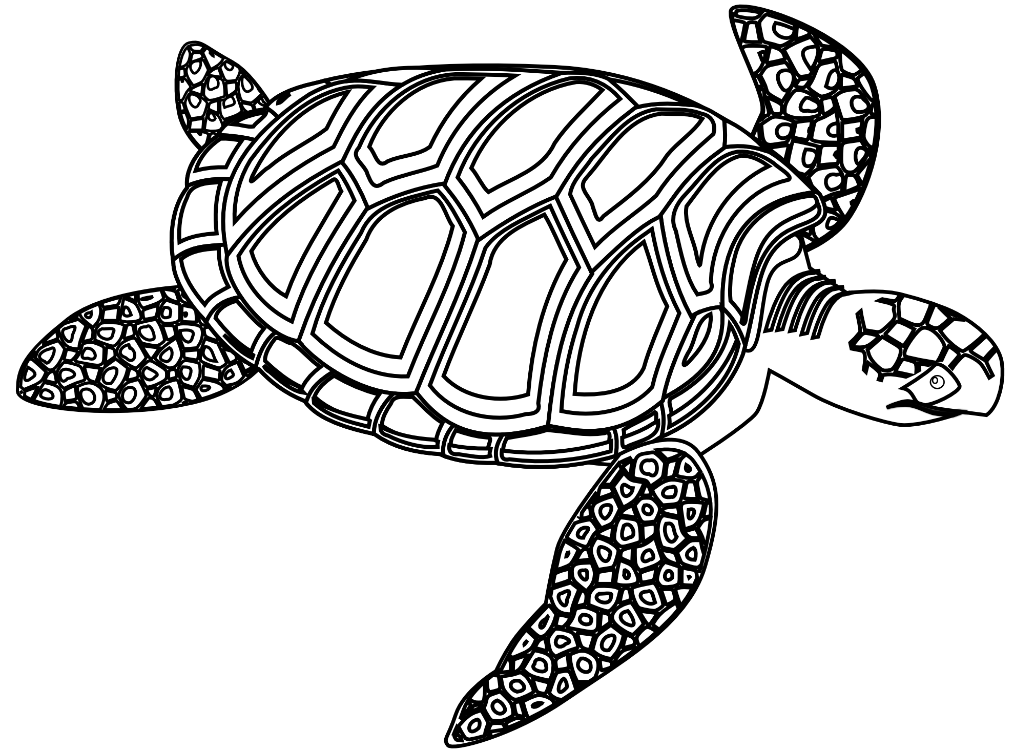 Sea turtle clipart black and white free