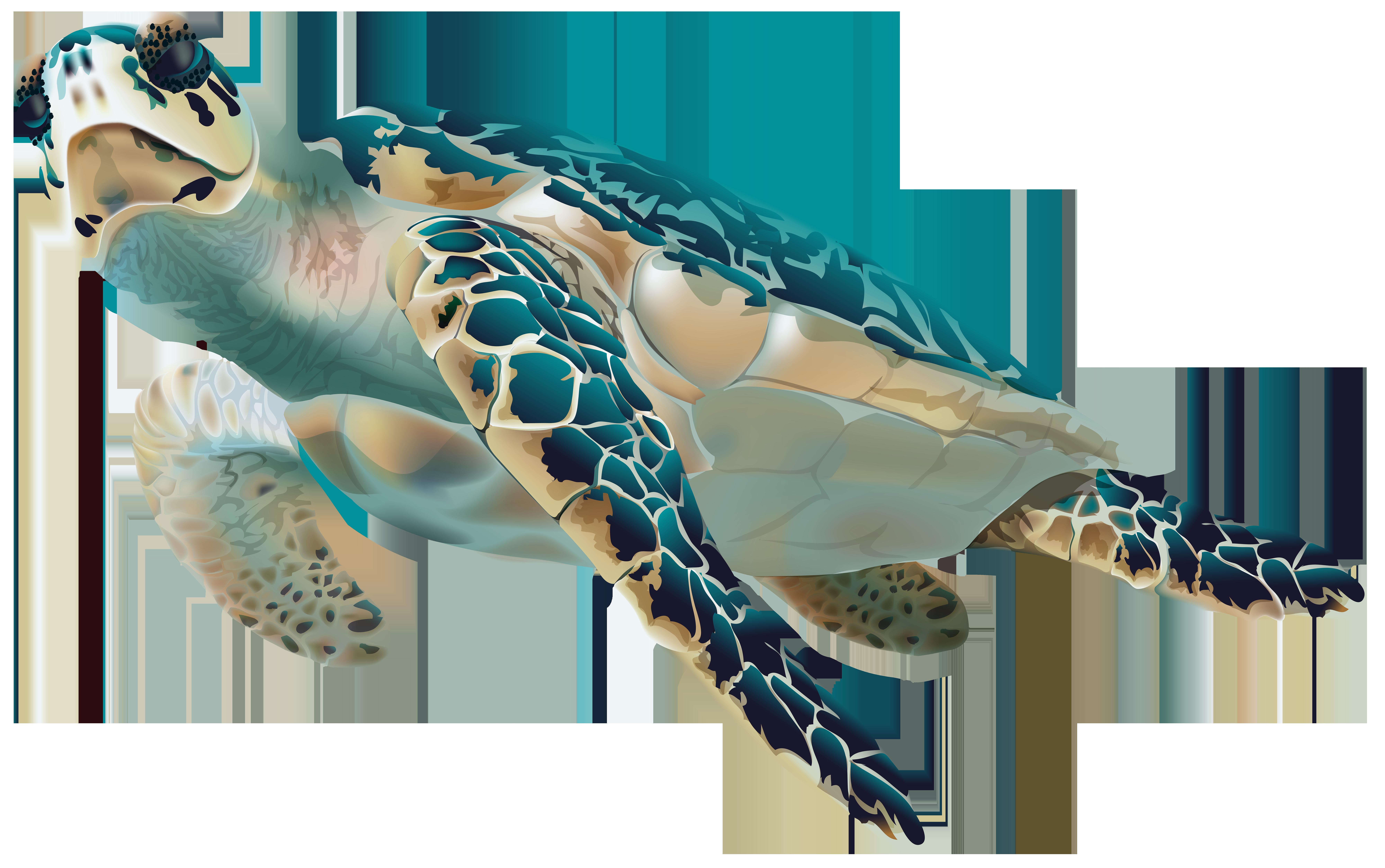 Sea turtle transparent clip art image clipart