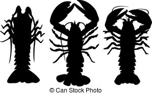 Spiny lobster clipart 3