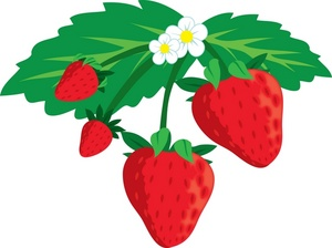 Strawberry clipart border free images 2
