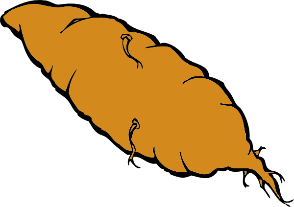 Sweet potato clipart 2