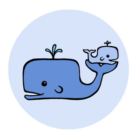 Baby whale clipart free images