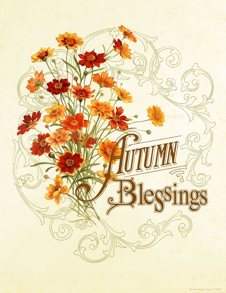 Blessings quotes in clipart 2