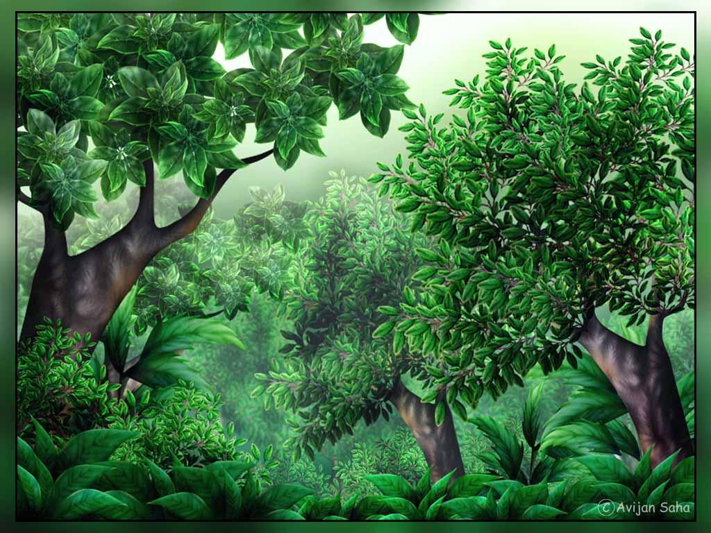 Free jungle clip art pictures