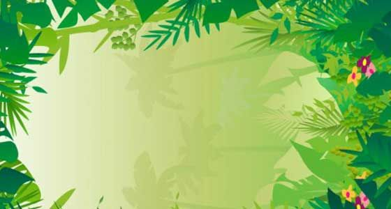 Free jungle clipart background