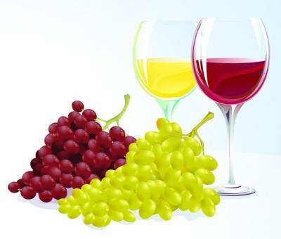 Grapes and wine clipart