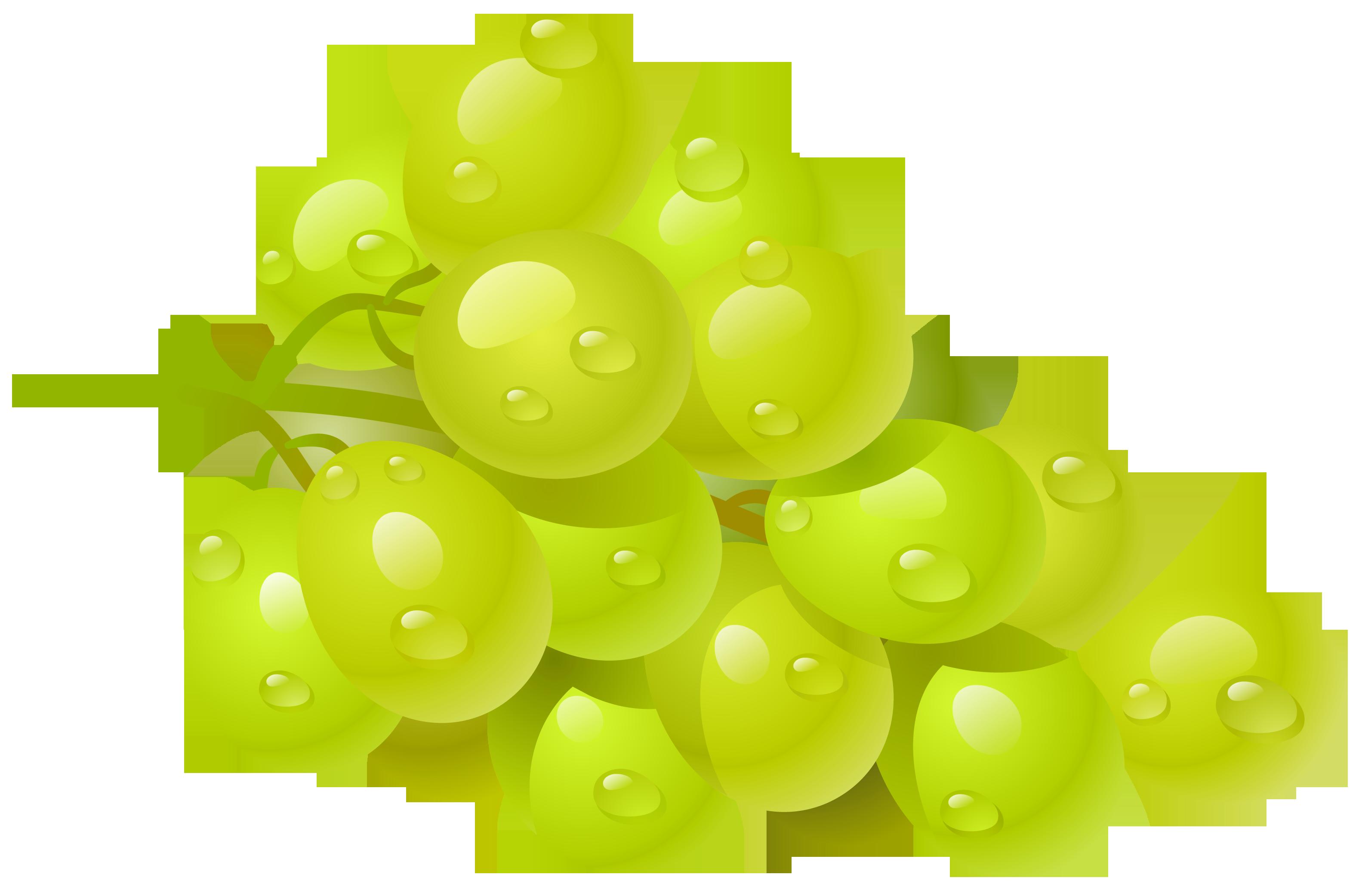 Grapes clip art free clipart images image 2
