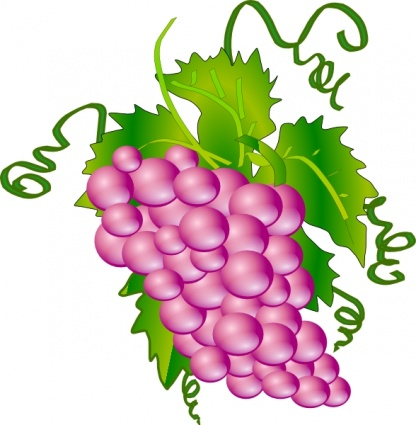 Grapes clipart black and white free images 2