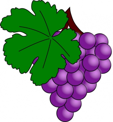 Grapes clipart free images 5