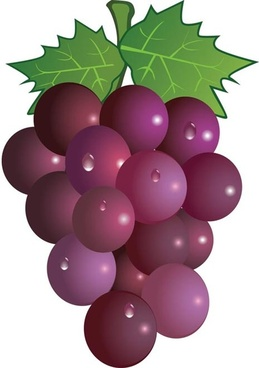 Grapes Images Clip Art
