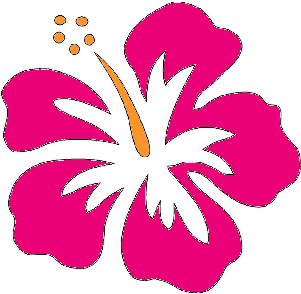 Hawaiian flower clip art