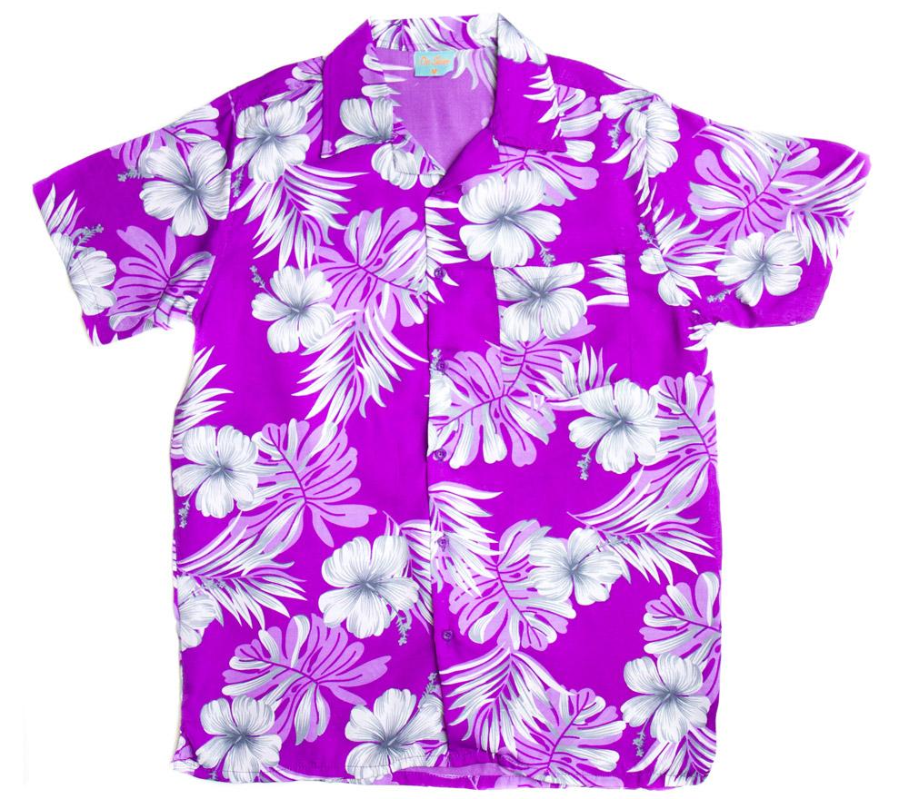 Hawaiian cartoon clipart gclipart hawaiian shirt clip art 2 izmirmasajfo Gallery