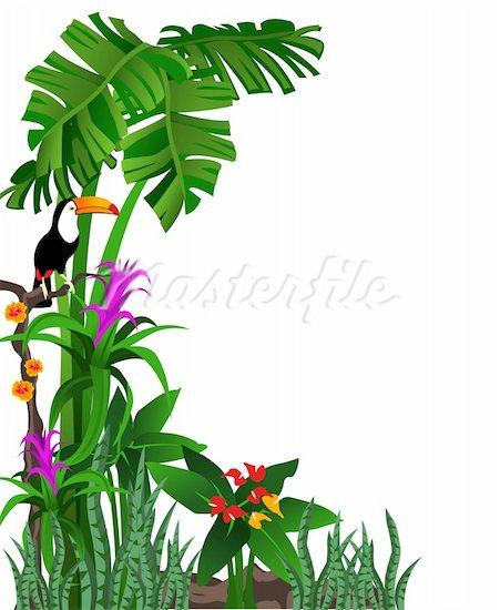 Jungle border clipart