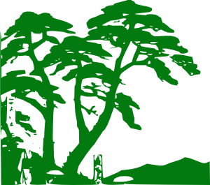 Jungle clipart 7 2