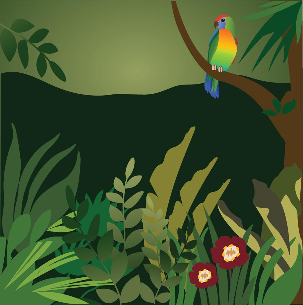 Jungle clipart 8