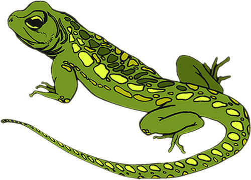 Lizard clipart free images