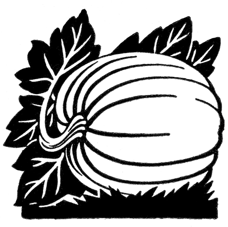 Pumpkin  black and white pumpkin clipart black and white aztec