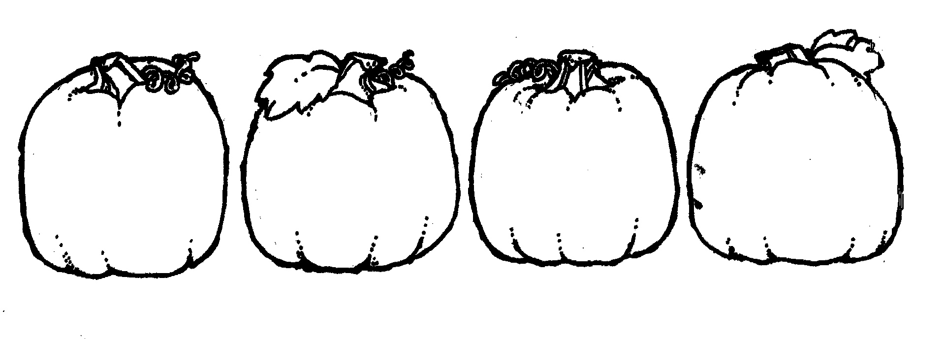 Pumpkin  black and white pumpkin outline clipart black and white free 5