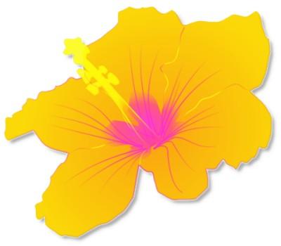 Tropical free hawaiian clip art flower luau 5