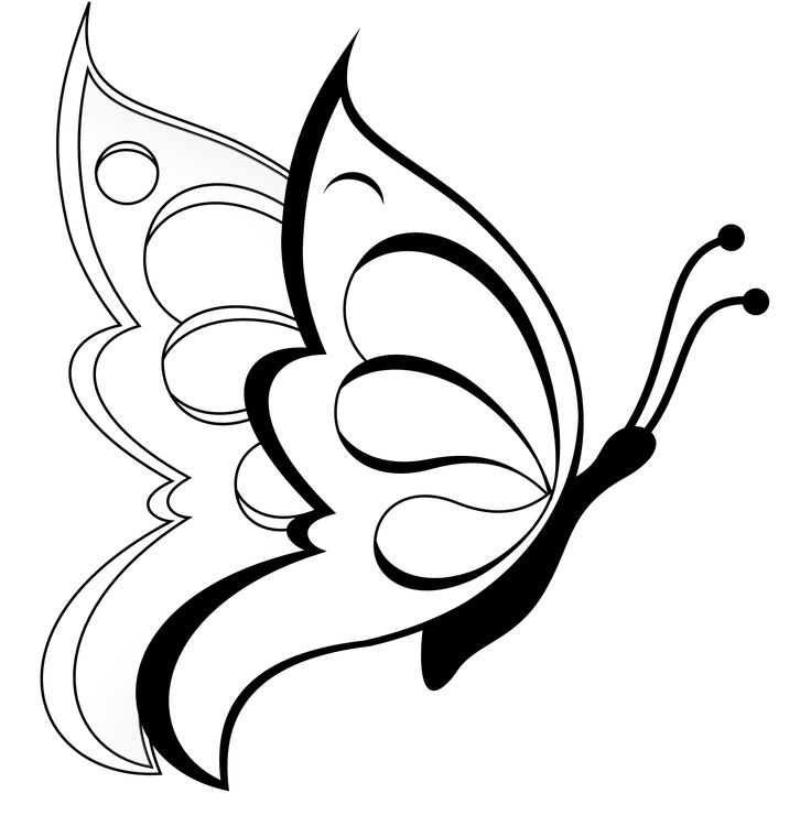 Butterfly  black and white butterfly clipart black and white 2
