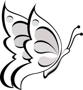 Butterfly  black and white butterfly clipart black and white 8