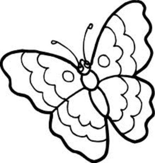 Butterfly  black and white cartoon butterfly clipart black and white 2