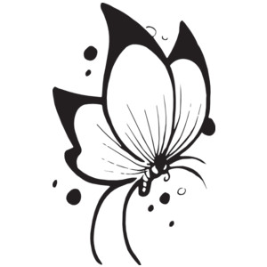 Butterfly  black and white flying butterfly clipart black and white