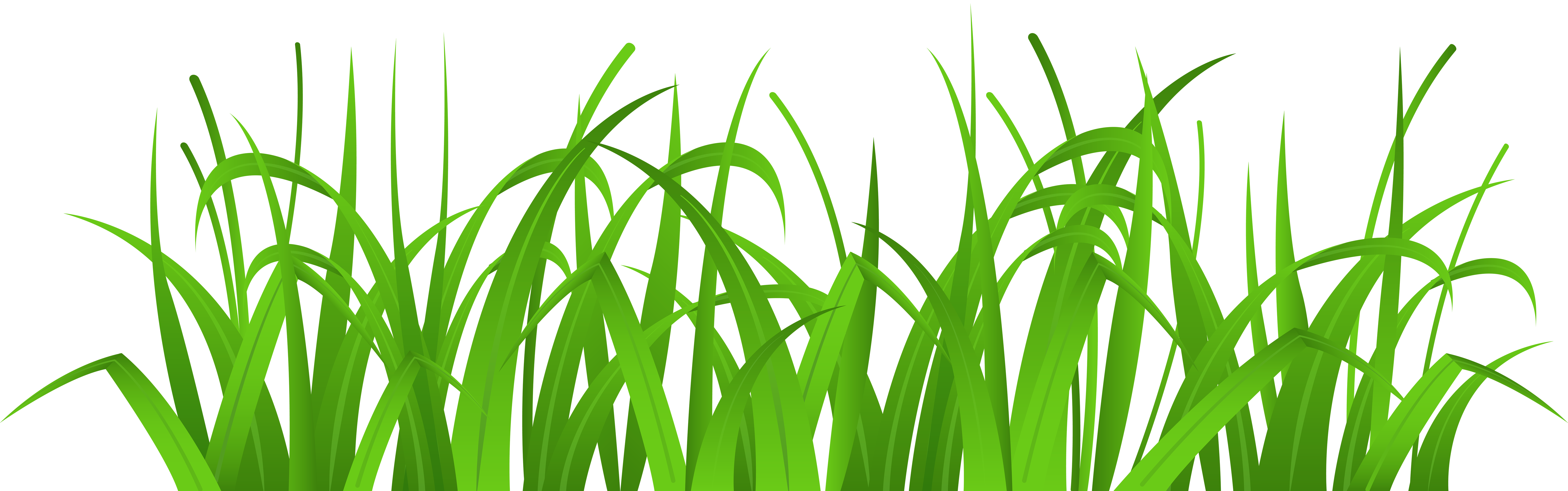 China grass clipart clipground
