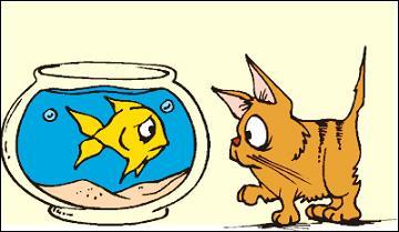 Free goldfish clipart 4