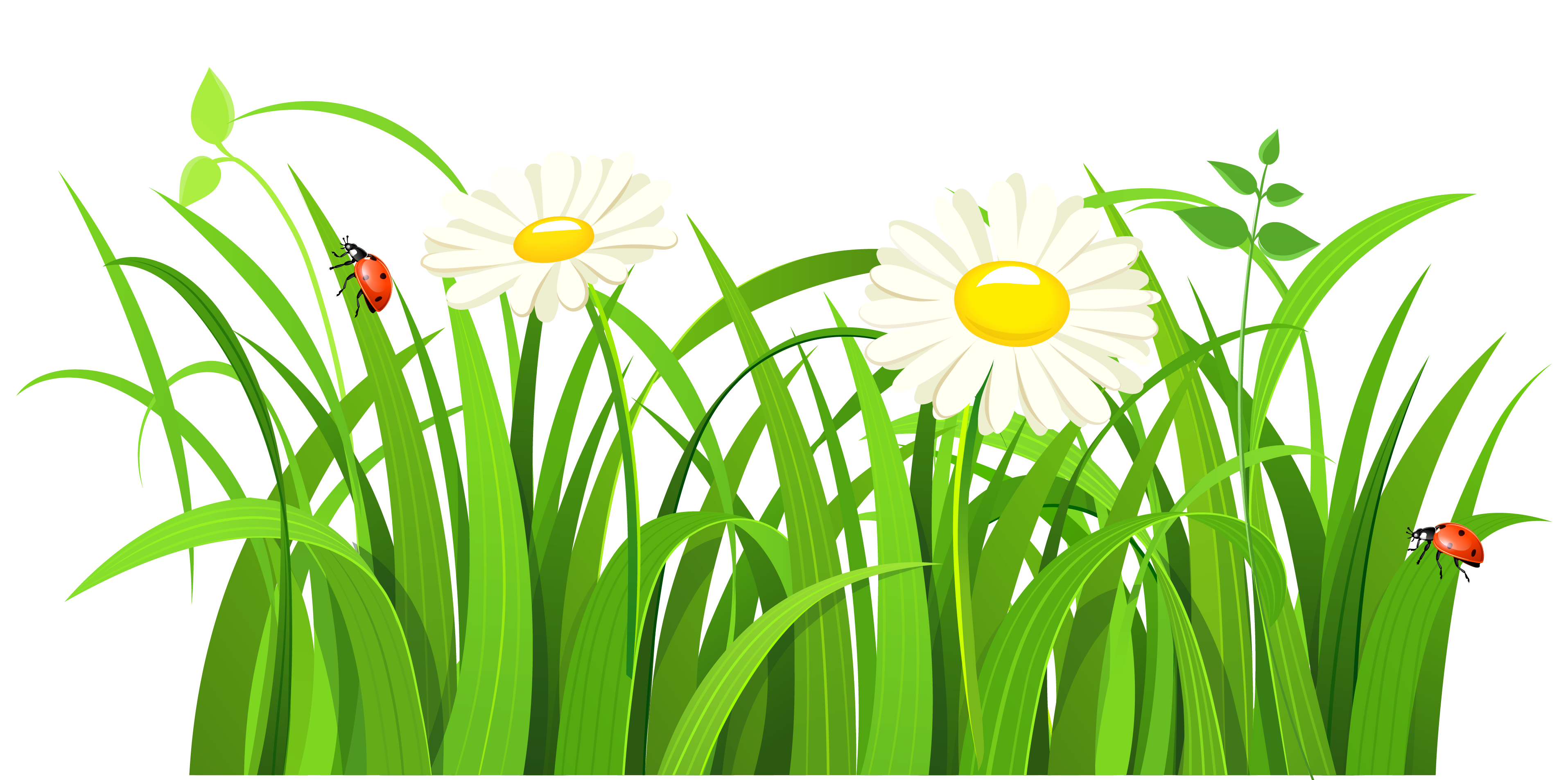 Free grass clip art pictures 3