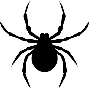 Free spider clip art pictures 2