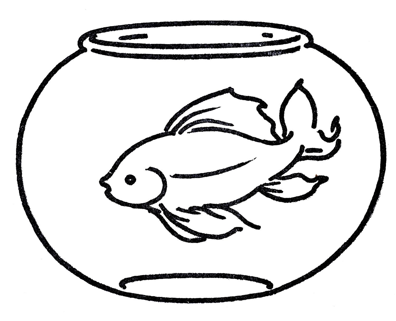 Goldfish bowl clipart 2