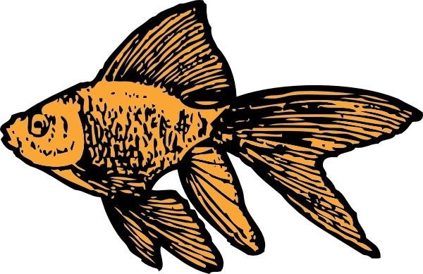 Goldfish clip art free vector in open office drawing svg