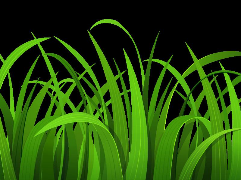 Grass clip art free clipart images 8