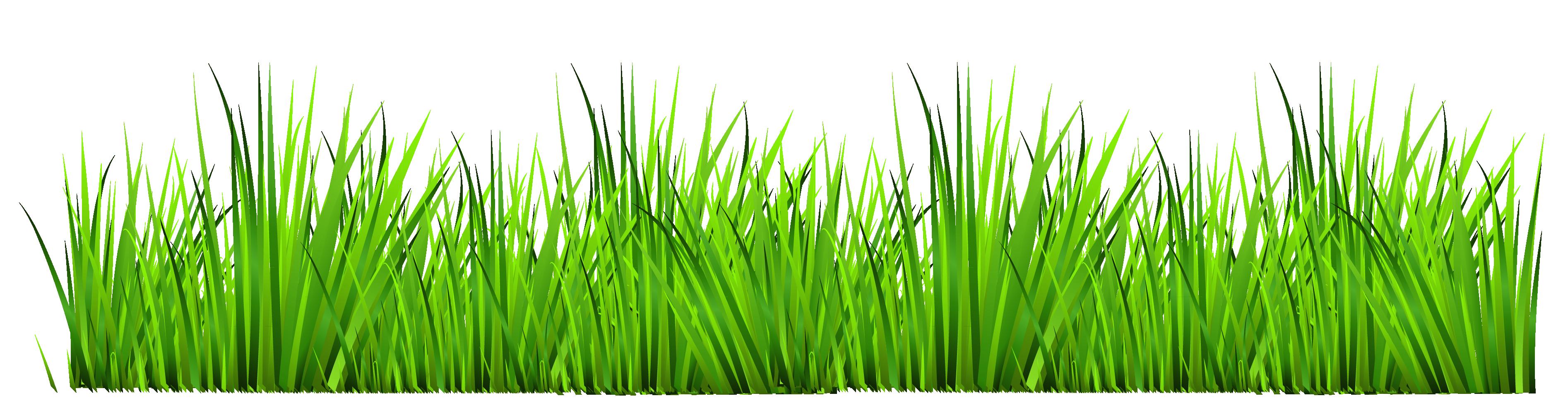 Grass clip art free clipart images