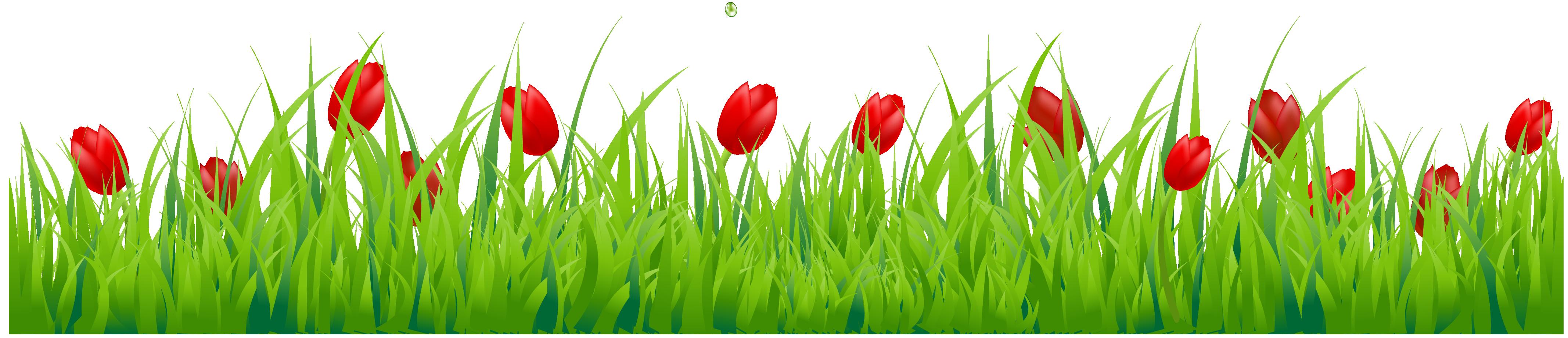 Grass clip art images free clipart