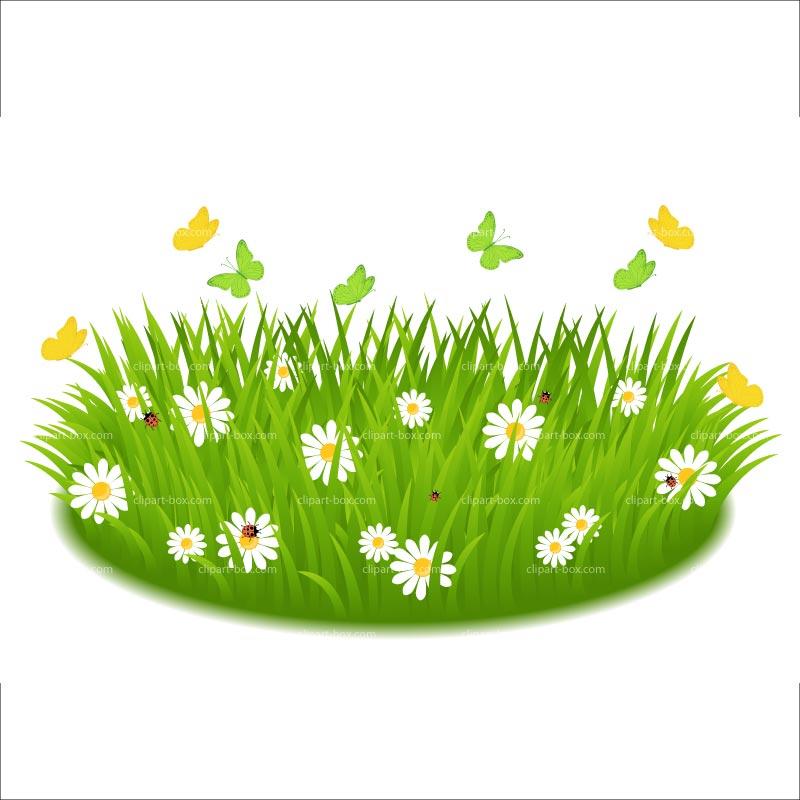 Grass clipart 12