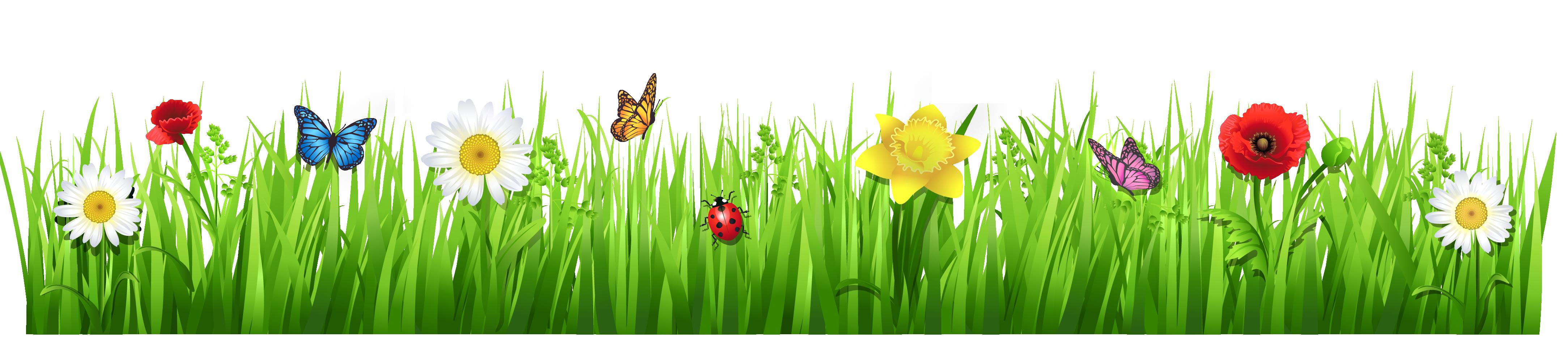 Grass clipart 14