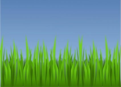 Grass clipart 15