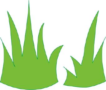Grass clipart 17